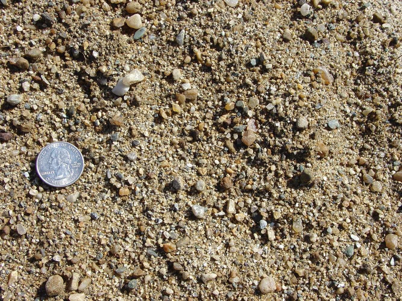 Sand - Bedding