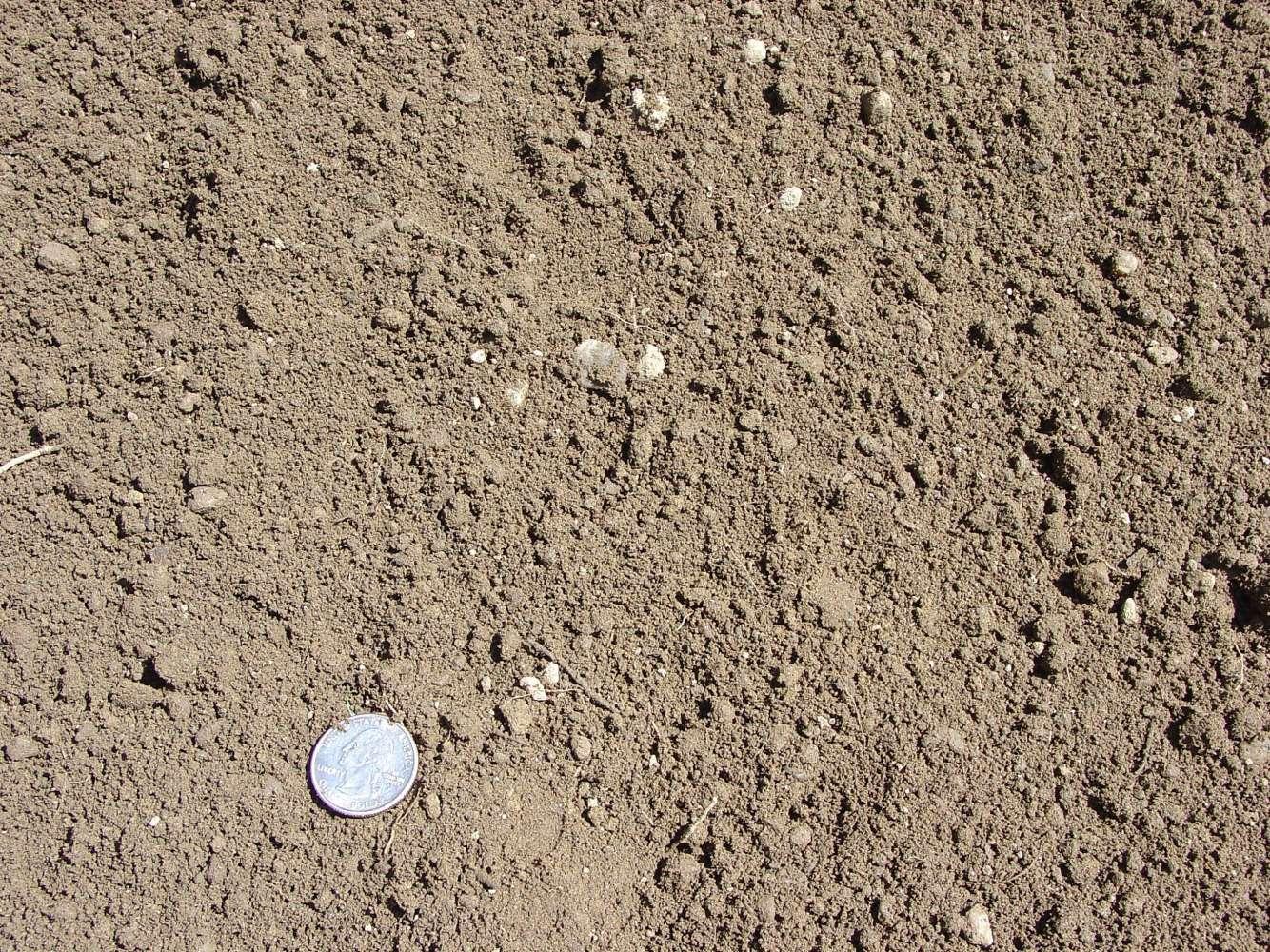 Top Soil / Loam